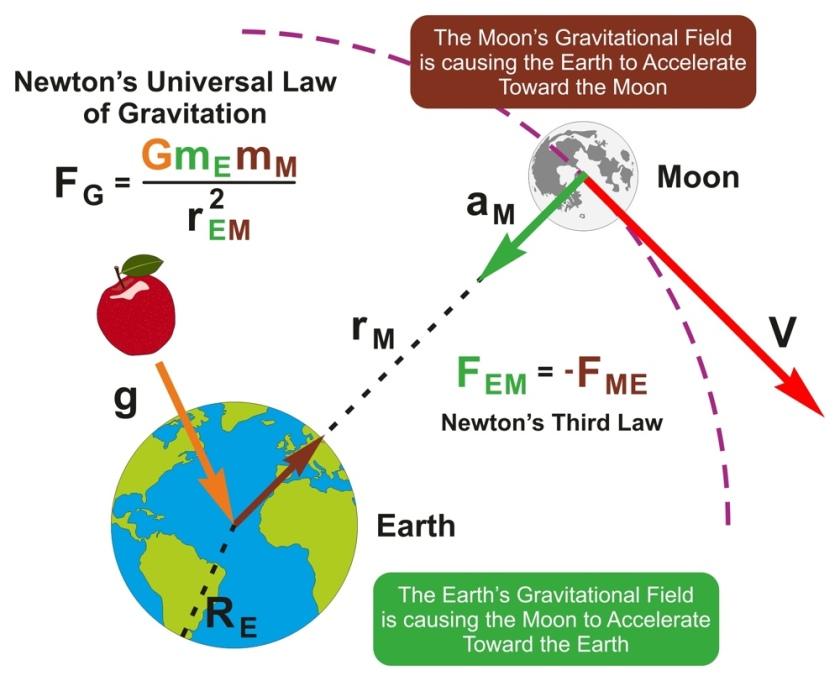 Newton'un Evrensel Kütle Çekim Yasası – Uzay Teknesi